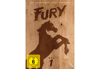 FURY - 1.BOX (SOFTBOX-VERSION) [DVD]