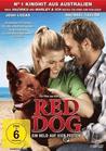 Red Dog [DVD] - broschei