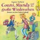 Conni, Mandy und das große Wiedersehen - (CD)