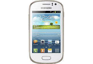 SAMSUNG Fame S6810P Wit
