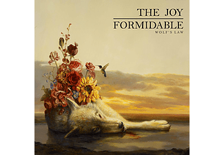 The Joy Formidable - Wolf's Law (CD)