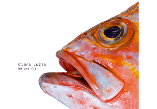 Clara Luzia - We Are Fish [CD]
