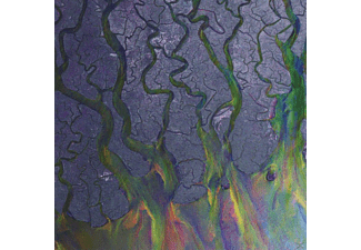 Alt-J - An Awesome Wave - (CD)