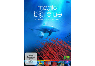 Magic of Big Blue - (DVD)