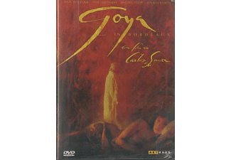 Goya in Bordeaux [DVD]