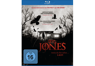 Mr. Jones - (Blu-ray)