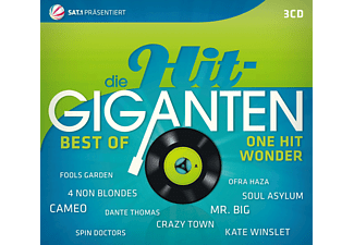 Various - The Best One Hit Wonders...Ever!