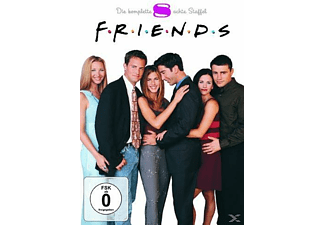 Friends - Staffel 8 [DVD]