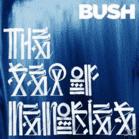 Bush - The Sea Of Memories [Vinyl] - broschei