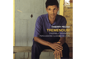 Percussions Clavier De Lyon, Ensemble Variances - Tremendum - (CD)