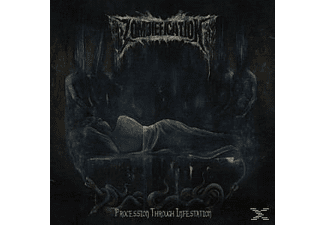Zombiefication - Procession Through Infestation - (Vinyl)