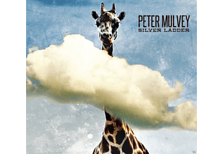 Peter Mulvey - Silver Ladder - (CD)