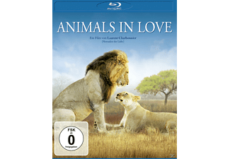 Animals in Love - (Blu-ray)