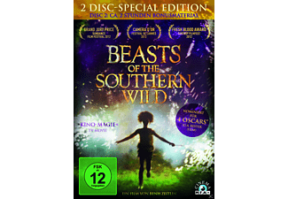 Beasts of the Southern Wild (Special Edition) - (DVD)