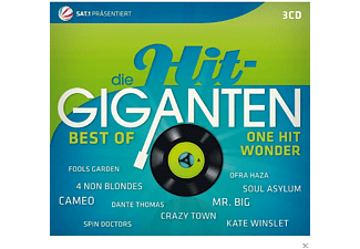VARIOUS - Die Hit Giganten - Best Of One Hit Wonder - (CD)