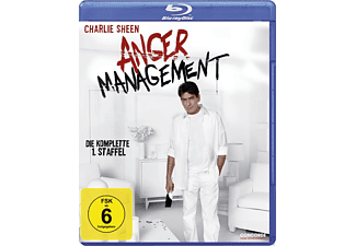 Anger Management - Staffel 1 [Blu-ray]
