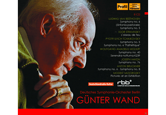 Günter Wand, Deutsch Symphonie Orchester Berlin - Deutsches Symphonie-Orchester Berlin [CD]