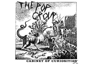 The Pop Group - Cabinet Of Curiosities [CD]