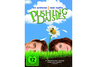 Pushing Daisies - Staffel 1 [DVD]