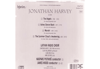 james wood the essay radio 3 New london chamber choir, james wood, john whiting 100890 guildhall school of music, london (guildhall new music ensemble, james wood) broadcast october 1981 dutch radio (renée reznek) with which to open and with which to close 1982 (soprano, clarinet, piano c 3' texts by ben johnson.
