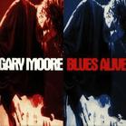 Gary Moore - Blues Alive [CD] jetztbilligerkaufen