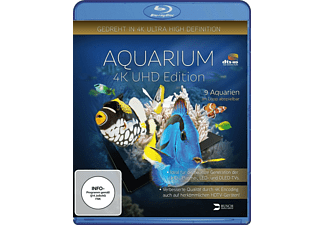 Aquarium 4k UHD Edition - (Blu-ray)