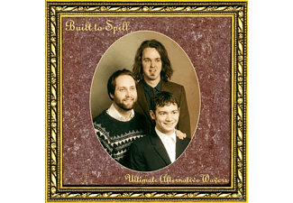 Built To Spill - Ultimate Alternative Wavers - (Vinyl)