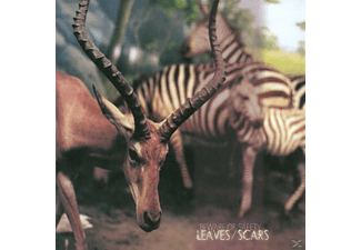 Beware Of Safety - Leaves/Scars - (Vinyl)