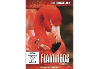 FASZINATION FLAMINGOS [DVD]