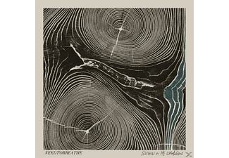 Needtobreathe - Rivers In The Wasteland [CD]