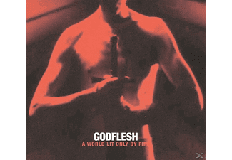 Godflesh - A World Lit Only By Fire - (Vinyl)