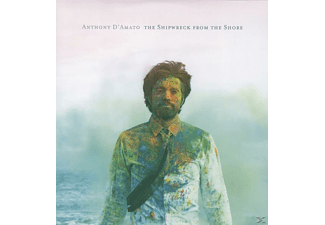 Anthony D'amato - The Shipwreck From The Shore - (Vinyl)