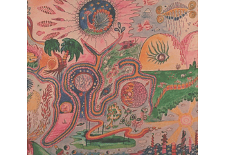 Youth Lagoon - Wondrous Bughouse - (CD)