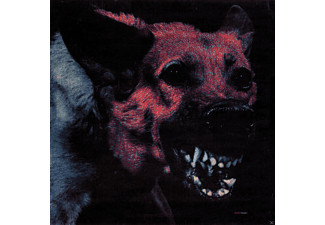 Protomartyr - Under Color Of Official Right - (CD)