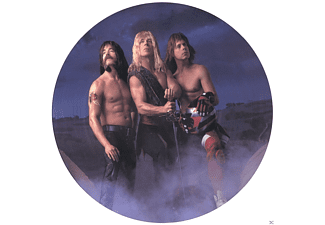 Spinal Tap - Break Like The Wind (Picture) [Vinyl]