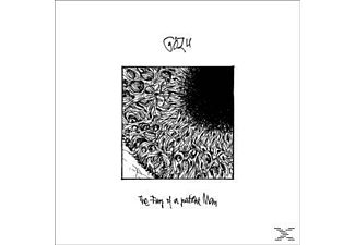 Gozu - The Fury Of A Patient Man - (Vinyl)