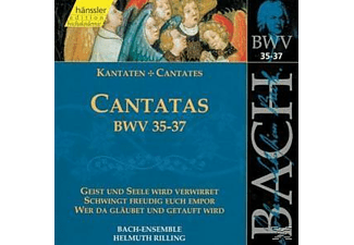 Bach Ensemble - KANTATEN BWV 35-37 - (CD)