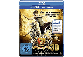 Fighting Beat 2 (3D) - (3D Blu-ray)