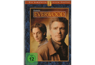 Everwood - Staffel 1 [DVD]