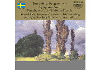 Swedish Radio Symphony Orchtra, Norrkoping Symphony Orchestra - Symphony No. 1 & No. 4 - (CD)