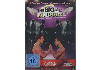 BIG GAY MUSICAL - (DVD)