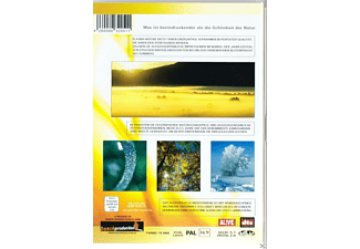 PLASMA NATURE - (DVD)
