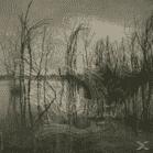 Myra - Valley (CD) - broschei