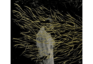 Forest Swords - Engravings - (CD)