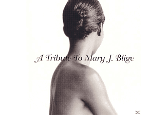 VARIOUS - Tribute To Mary J.Blige - (CD)