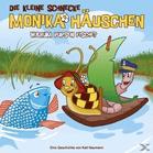 DIE KLEINE SCHNECKE MONIKA HÄUSCHEN 13: Warum Pupsen Fische? Kinder/Jugend CD jetztbilligerkaufen
