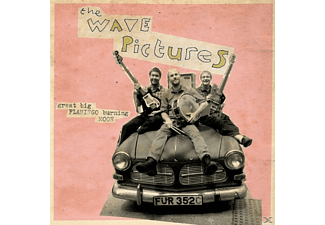 The Wave Pictures - Great Big Flamingo Burning Moon - (Vinyl)
