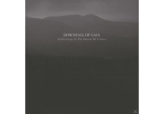Downfall Of Gaia - Suffocating In The Swarm Of Cranes - (CD)