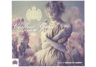 VARIOUS, Various/Sound Of Arrow (Mixed By) - Chillout Guide 2011 - (CD)