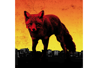 The Prodigy - The Day Is My Enemy (Ltd.Vinyl Box) [Vinyl]